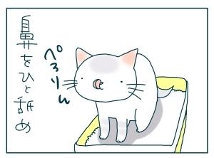 猫と一緒-20091125_10