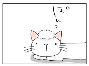 猫と一緒-20100816_06