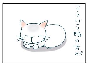 猫と一緒-20090531_15