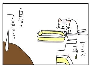 猫と一緒-20100825_05