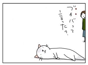 猫と一緒-20100329_07