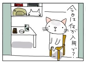 猫と一緒-20101115_03