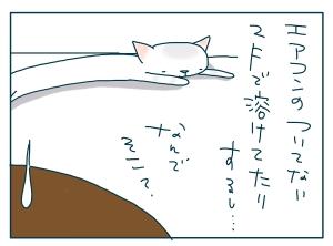 猫と一緒-20090727_02