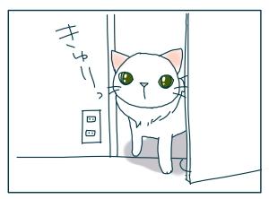 猫と一緒-20090826_08
