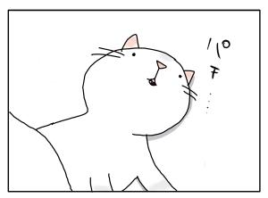 猫と一緒-20100318_15