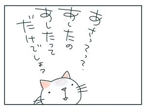 猫と一緒-20091230_03