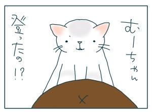 猫と一緒-20090930_04