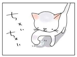 猫と一緒-20100618_08