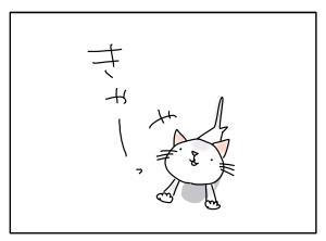 猫と一緒-20101110_01