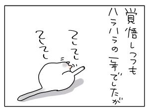 猫と一緒-20121230_05