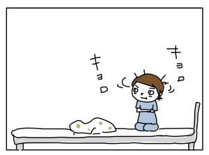 猫と一緒-20110707_09