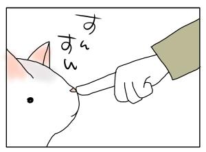 猫と一緒-20100317_03