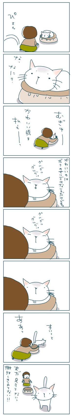 猫と一緒-20081223-02