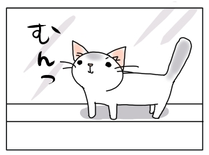 20161117_01