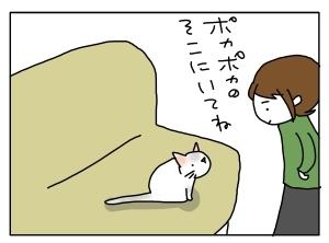 猫と一緒-20120127_02