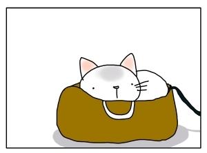 猫と一緒-20111101_01