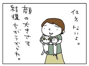 猫と一緒-20110920_06