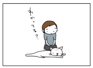 猫と一緒-20100730_07