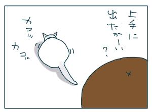 猫と一緒-20090706_01