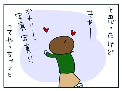 20190110_03