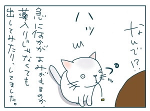 猫と一緒-20090821_19