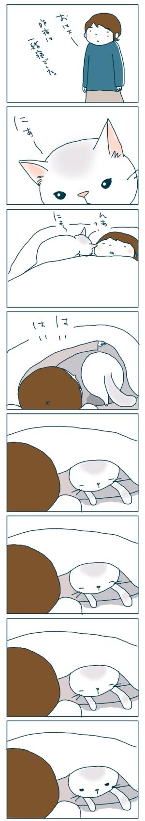 猫と一緒-20081221-01