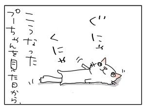 猫と一緒-20100628_06