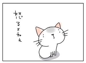 猫と一緒-20110427_08