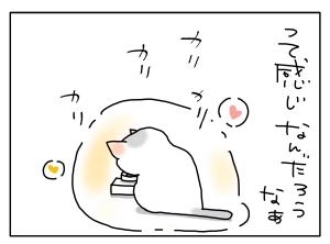 猫と一緒-20110213_06