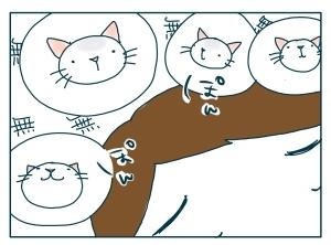 猫と一緒-20091112_16