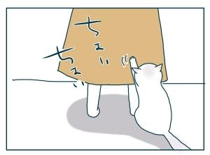 猫と一緒-20090728_04