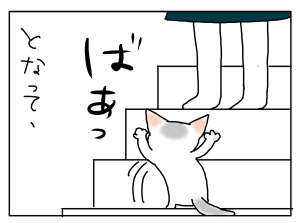 20170212_03