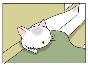 猫と一緒-20110823_04
