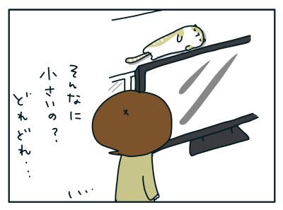 20190129_03