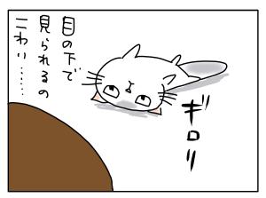 20170802_01