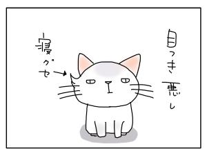 猫と一緒-20100823_18