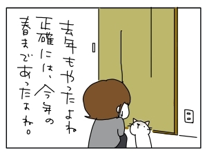 猫と一緒-201012122_09