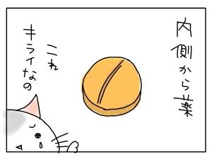 猫と一緒-20110213_04