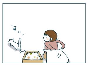 猫と一緒-20090529_17