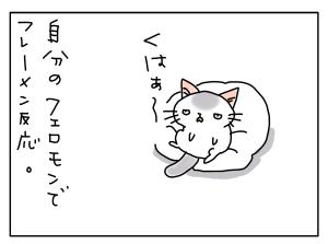 20171114_02