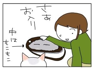 猫と一緒-20101126_05