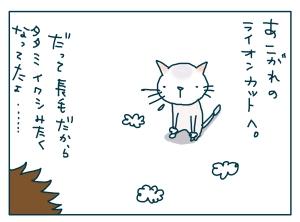猫と一緒-20090130-25