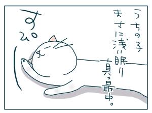 猫と一緒-20090531_19