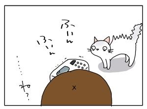猫と一緒-20100910_13