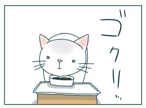 猫と一緒-20090809_04