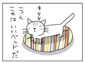 猫と一緒-20130725_06