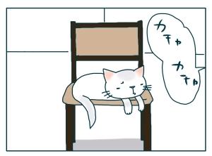 猫と一緒-20091214_12