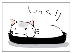 猫と一緒-20121002_11