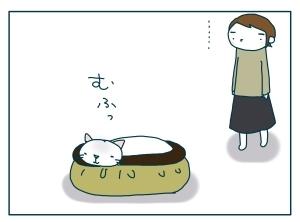 猫と一緒-20091114_12