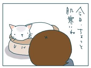 猫と一緒-20090525_07